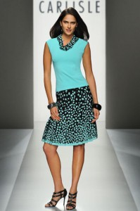Carlisle Polka Dot Skirt and Top